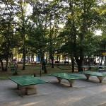 Sport & Fun park